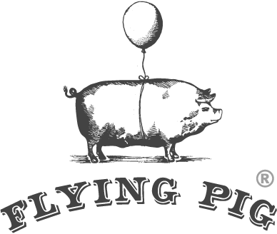 logo_flyingpig_header@2x